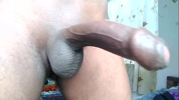 Indian, Indian cock